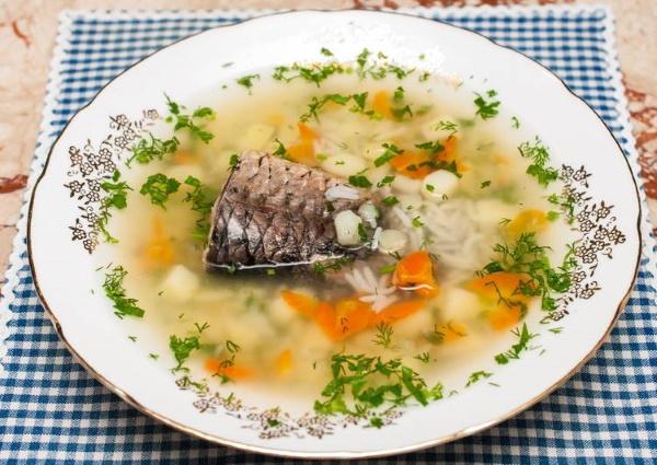 Уха из карпа. Рецепт с фото пошагово в казане на костре, мультиварке с пшеном, рисом, помидорами, яйцом