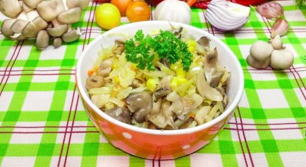 Что приготовить из грибов вешенок быстро и вкусно. Рецепты с фото