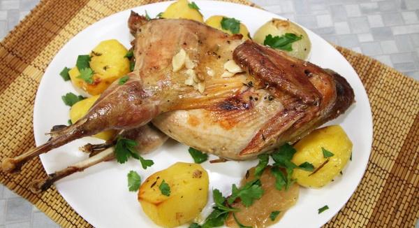 Как приготовить фазана вкусно. Рецепты