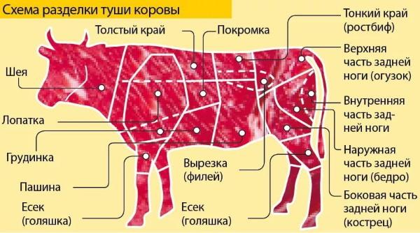 Оковалок говяжий. Что это такое, какая часть туши, что приготовить, рецепты в духовке, мультиварке