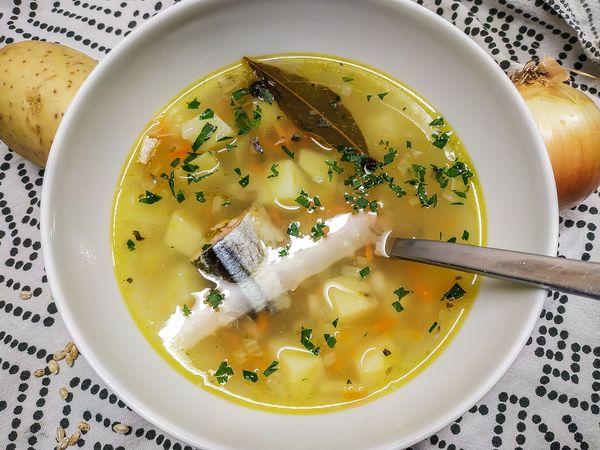 Суп из рыбных консервов сардины в томатном соусе, масле. Рецепты с рисом, пшеном, вермишелью