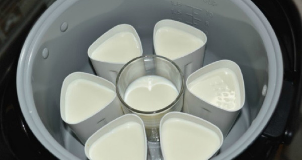 Йогурт в йогуртнице. Рецепт с Активиа, закваской, сметаной
