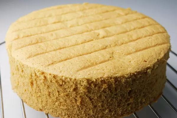 Влажный бисквит для торта в духовке. Рецепт с фото белый, с растительным маслом, какао