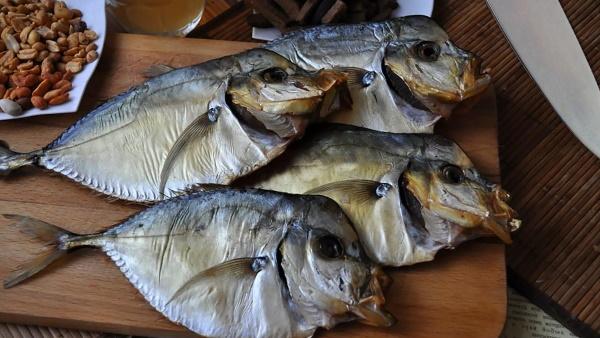 Как завялить рыбу в домашних условиях, чтобы мухи не садились в духовке, квартире, электросушилке