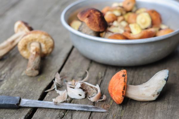 Паштет из грибов. Рецепт в домашних условиях