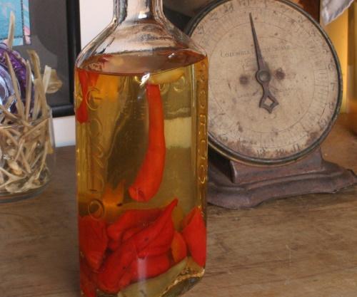 Перцовка на спирту в домашних условиях. Рецепт с медом, кориандром