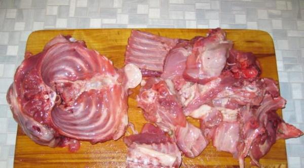 Мясо бобра. Рецепты приготовления в духовке, мультиварке