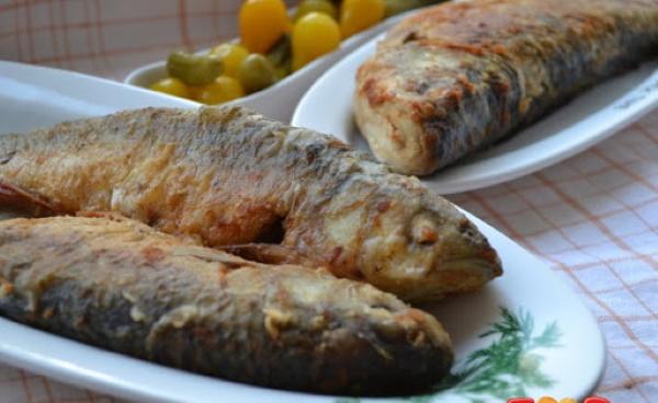 Жерех рыба. Как приготовить в духовке, соленую, балык, уху. Рецепты